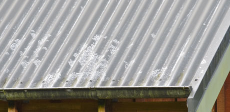 Lichen-roof-strip-paint-clean